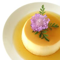 Vanilla Flan with Caramel Sauce Tutorial
