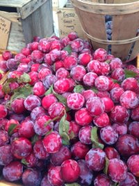 Plums at the Farmers' Market